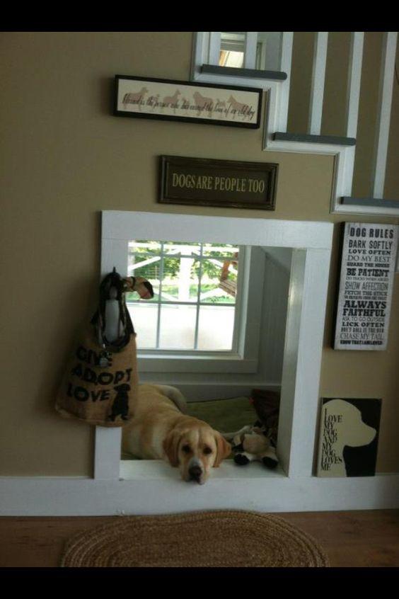 Las mascotas tienen su lugar bajo la escalera